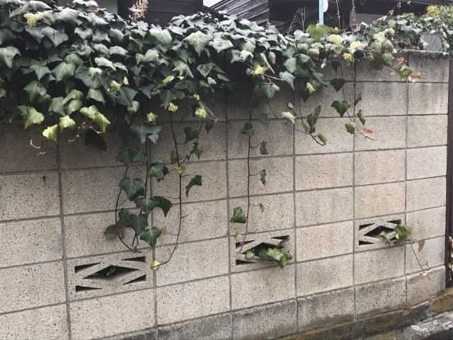 Block fence
