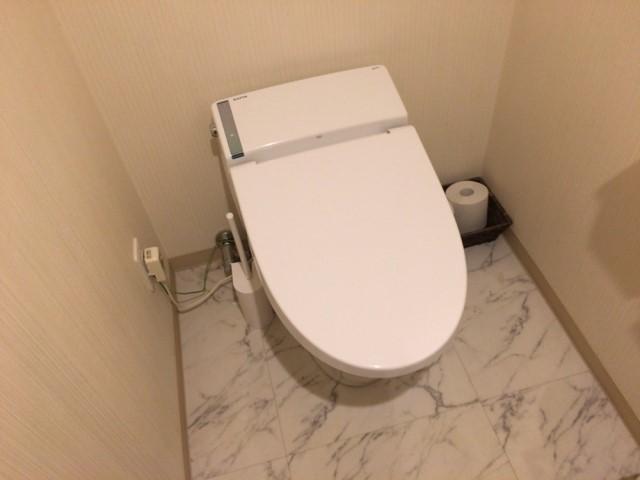 toilet-reform