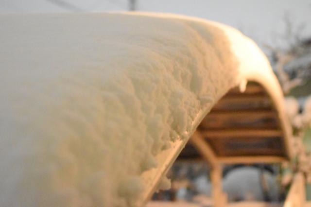 カーポートの雪